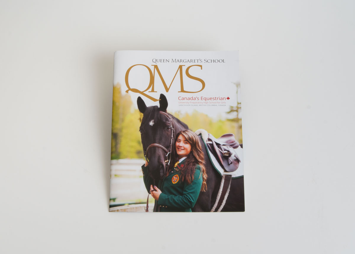 equestrian brochure short creative